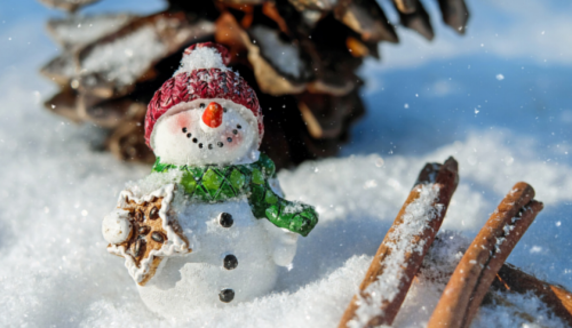 Case Study – Winter Wonderland Event Insurance